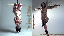 Double Bill: The True Beauty of, Japanese, Bondage 0