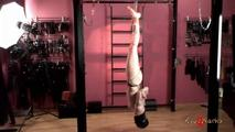 Upside-down Dame 1