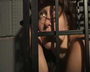 Klassiker - Sex in einem Käfig