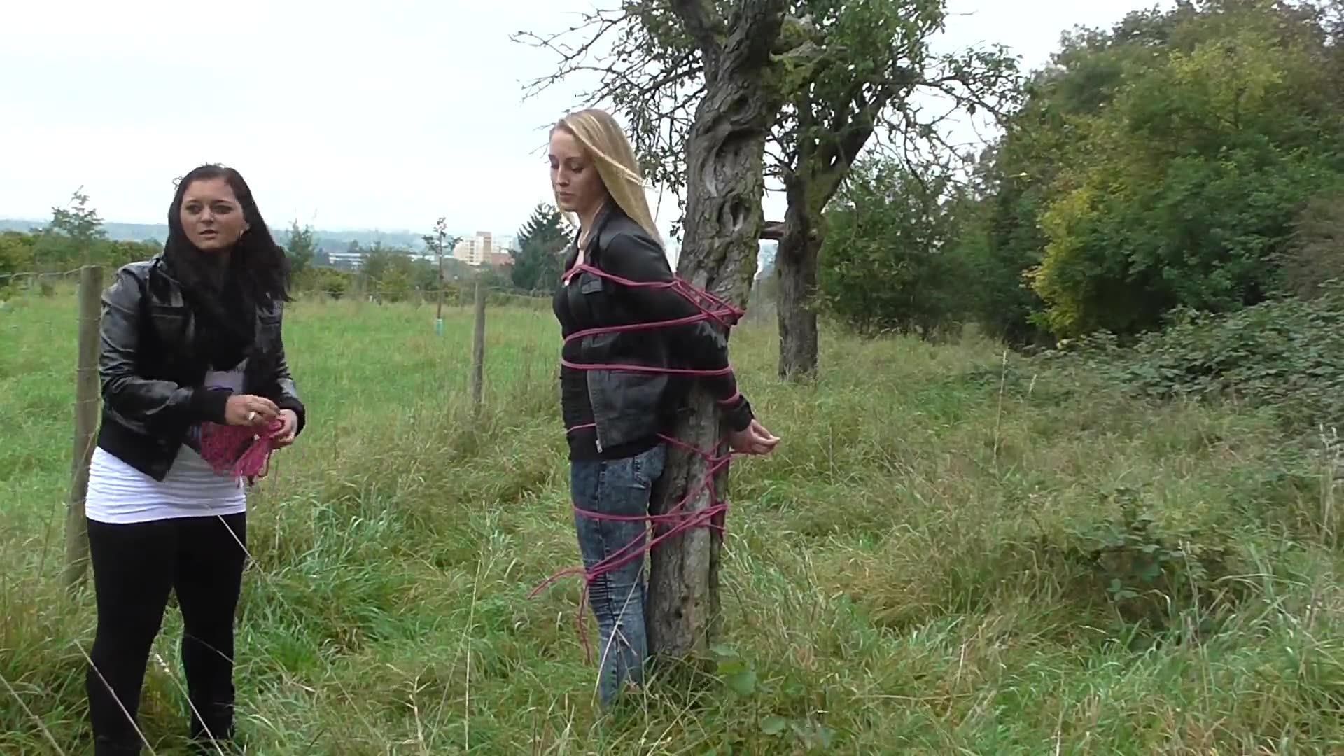 Baum Gefesselt